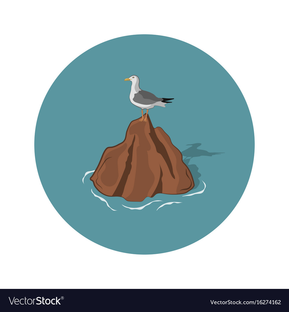 Seagull on a stone on a white background vector image