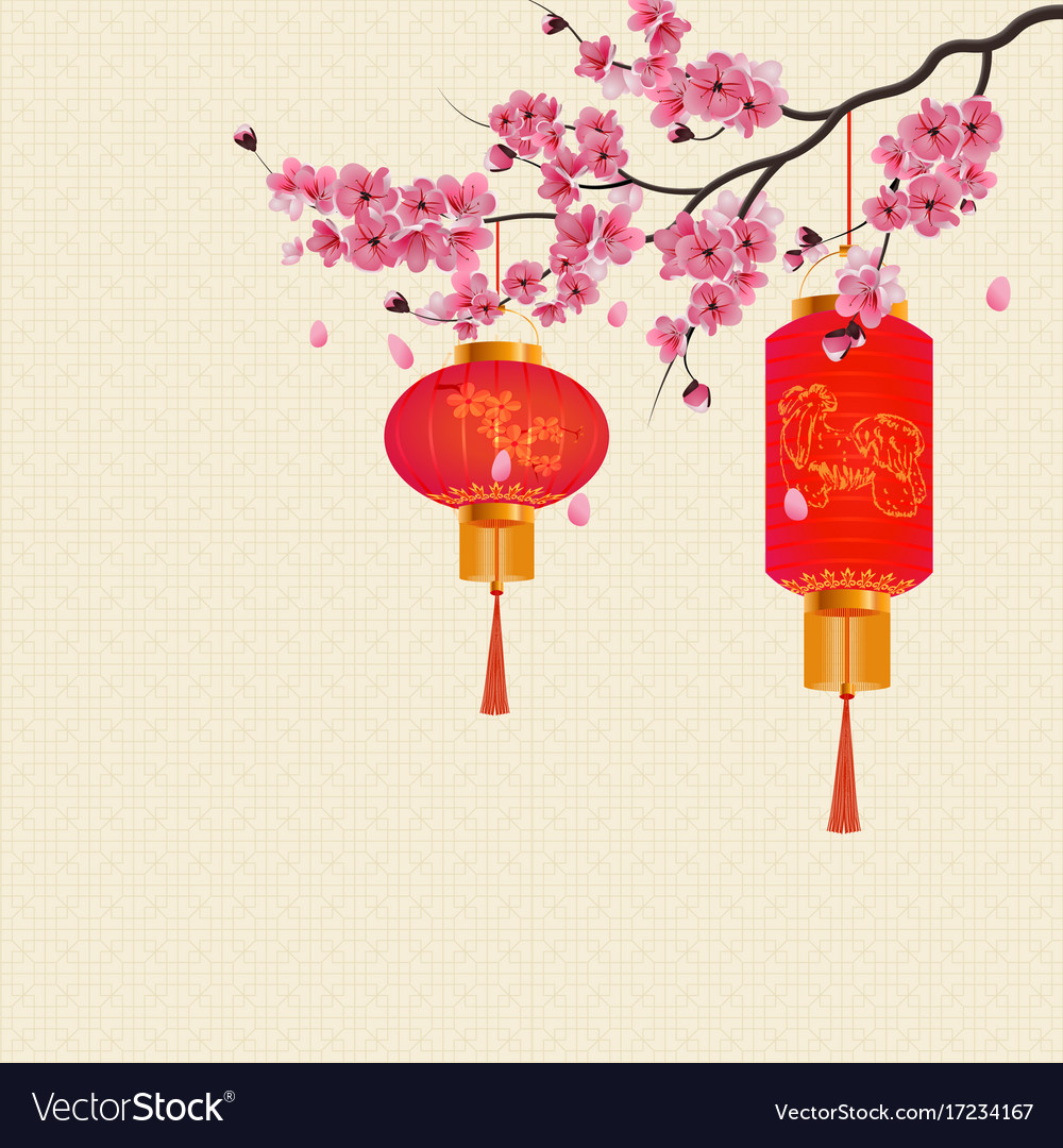 Chinese new year two red lanterns on a branch of