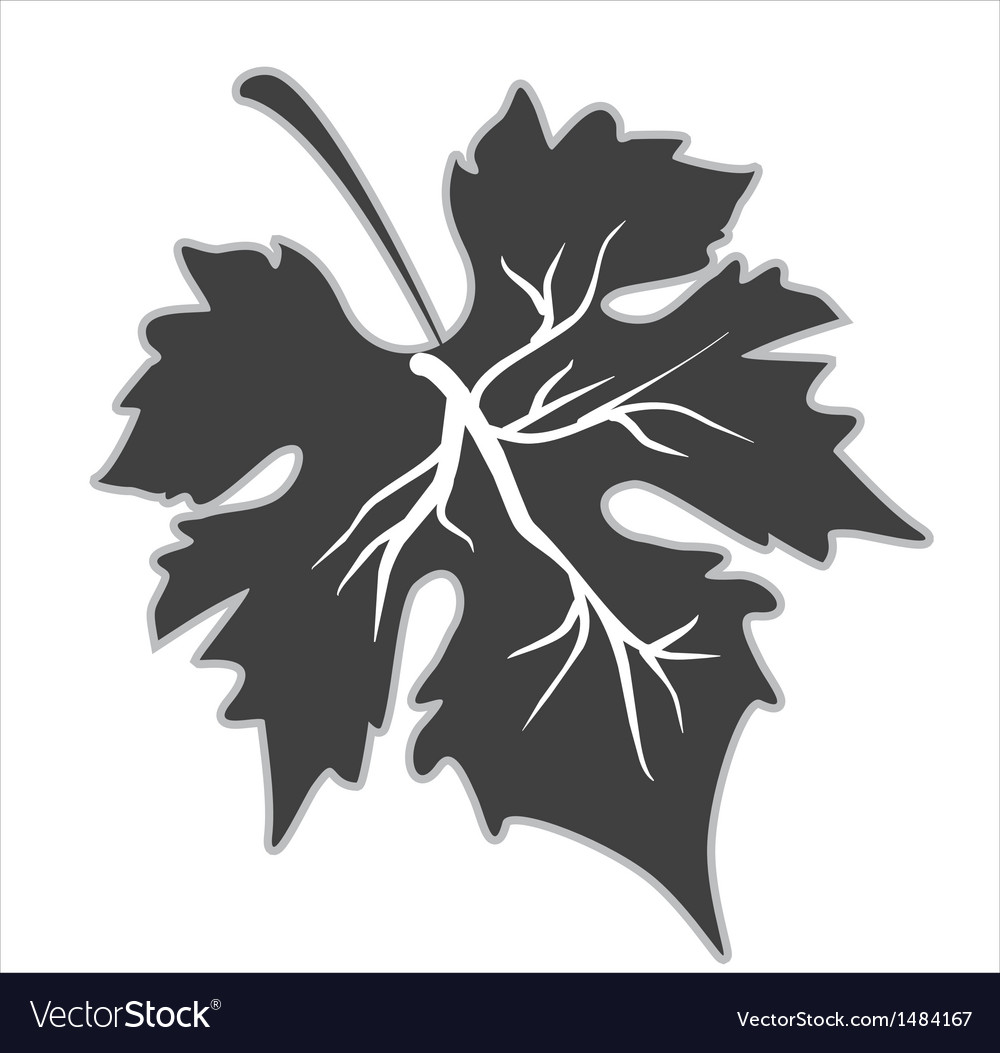 Grape Leaf Vector Free Download