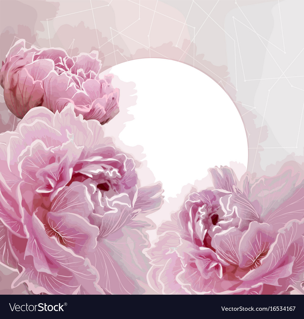 Pink peony flowers background with a round label vector image mightylinksfo