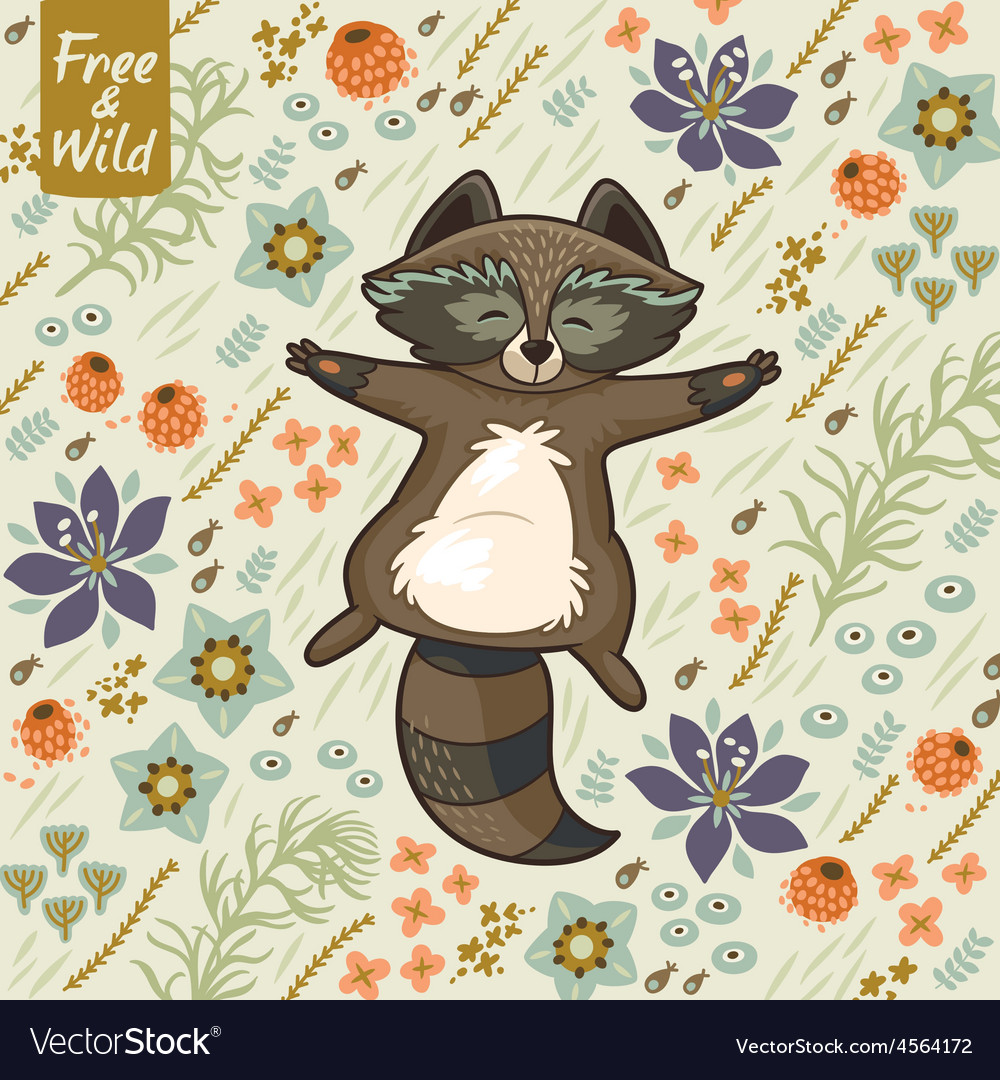 Funny little raccoon resting on the meadow vector image