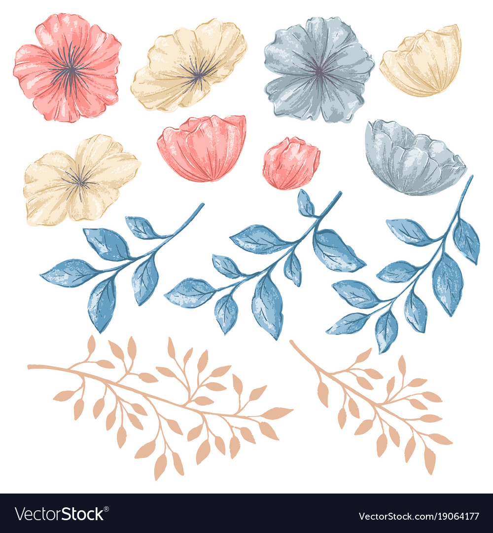 Floral isolated elements