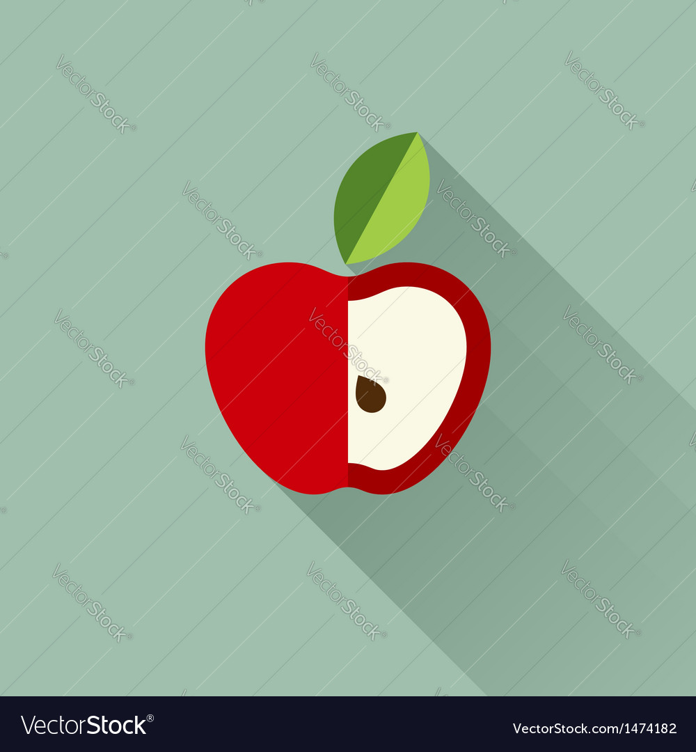 Apple with leaf vector image