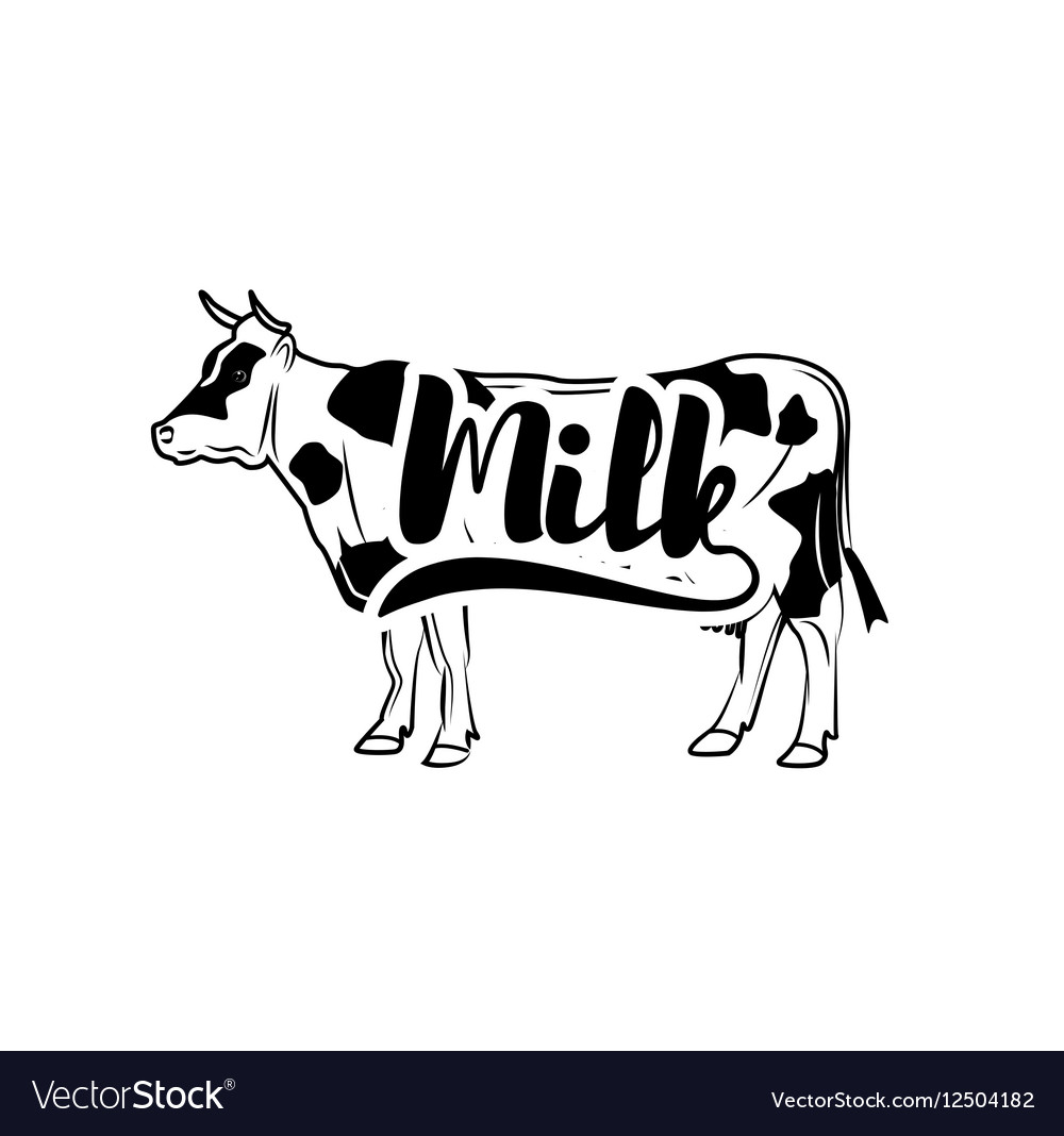 Cow Vintage isolated on white