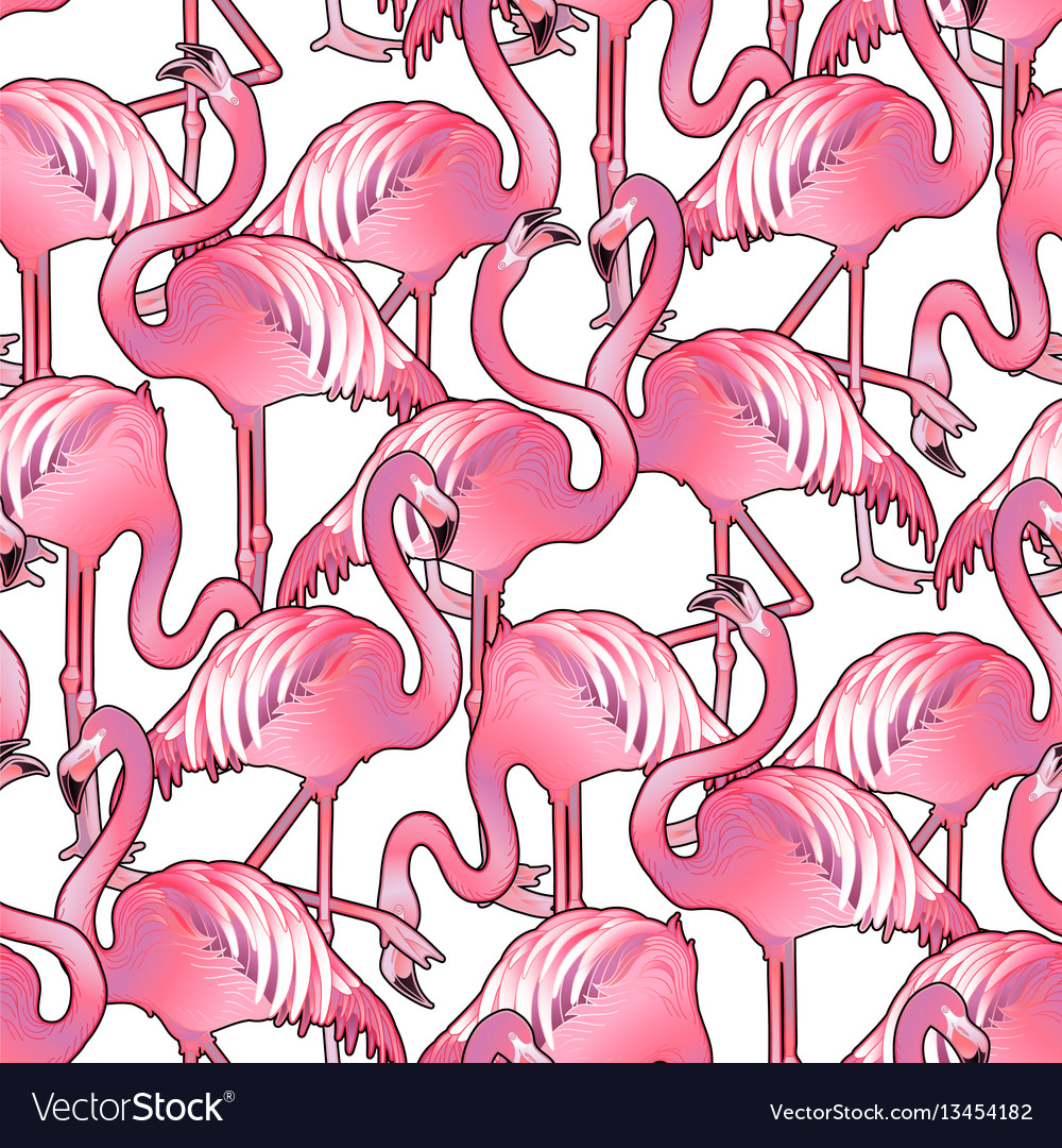 Cute graphic flamingo pattern