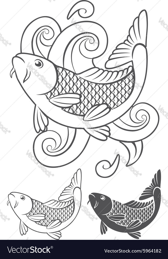 Koi carp vector image