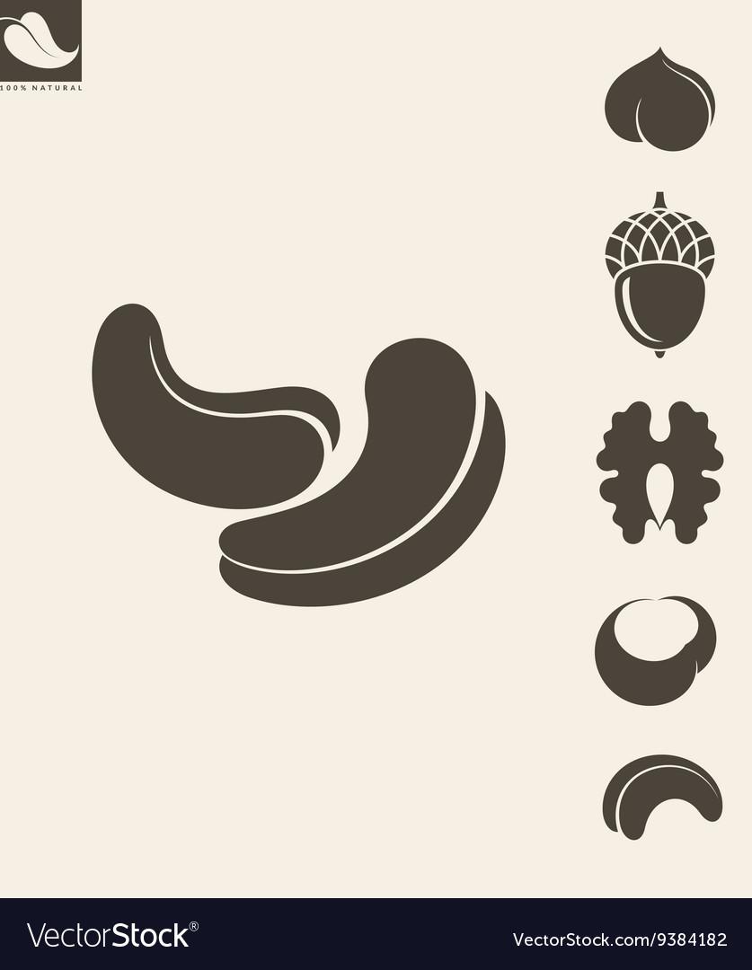 Nuts Icon set Hazelnut Cashews Walnut