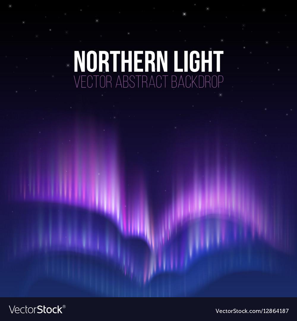 Aurora borealis northern light winter vector image