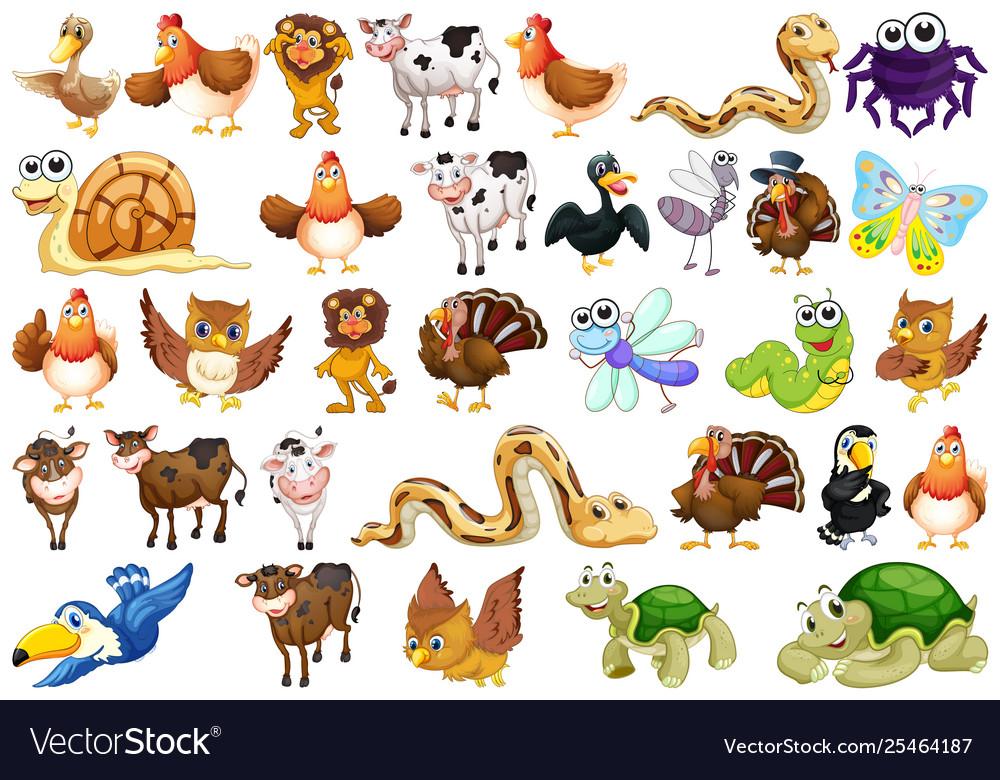Set animal character