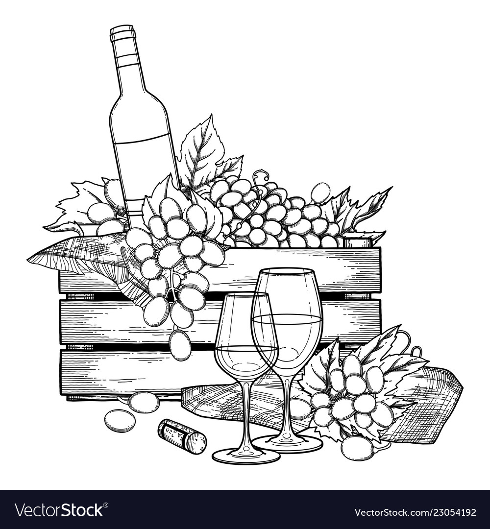 Graphic box of bottle and grapes wine glasses