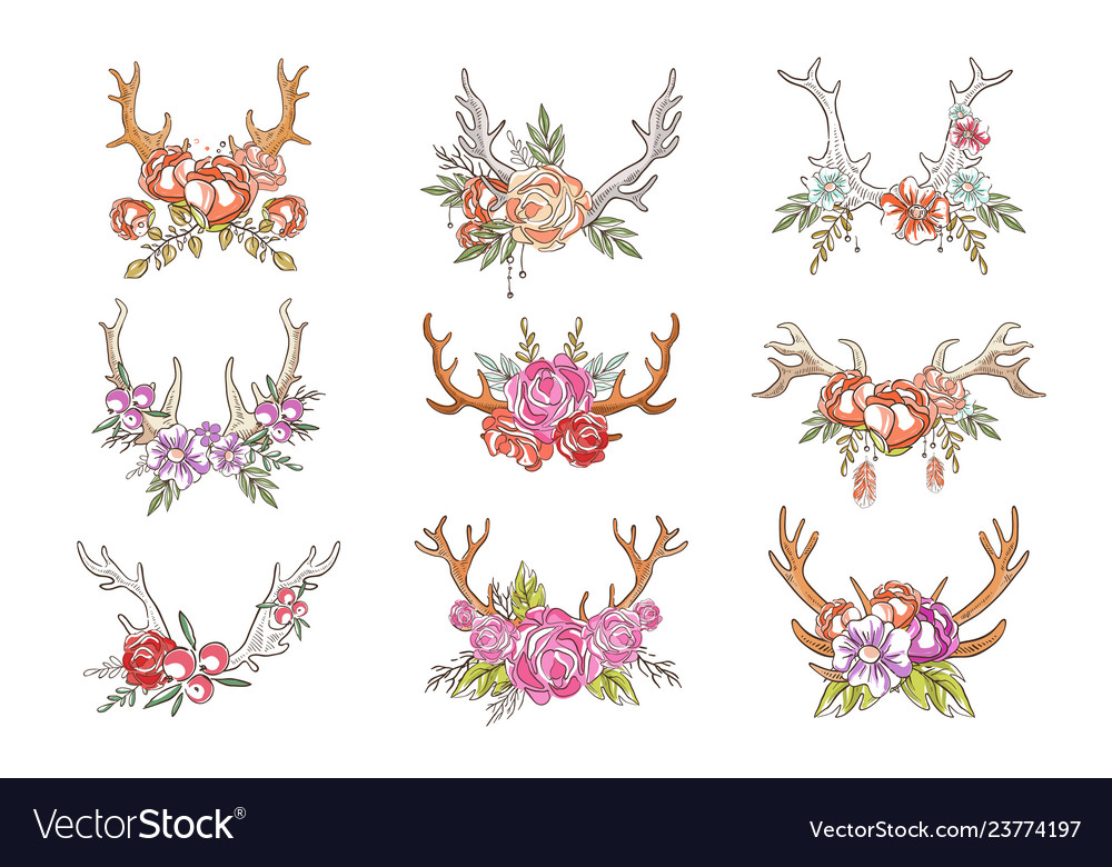 Deer horns with flowers and plants set hand drawn