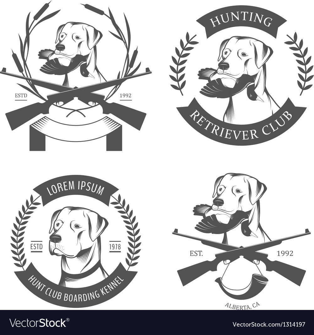 Set of hunting retriever logos labels and badges vector image