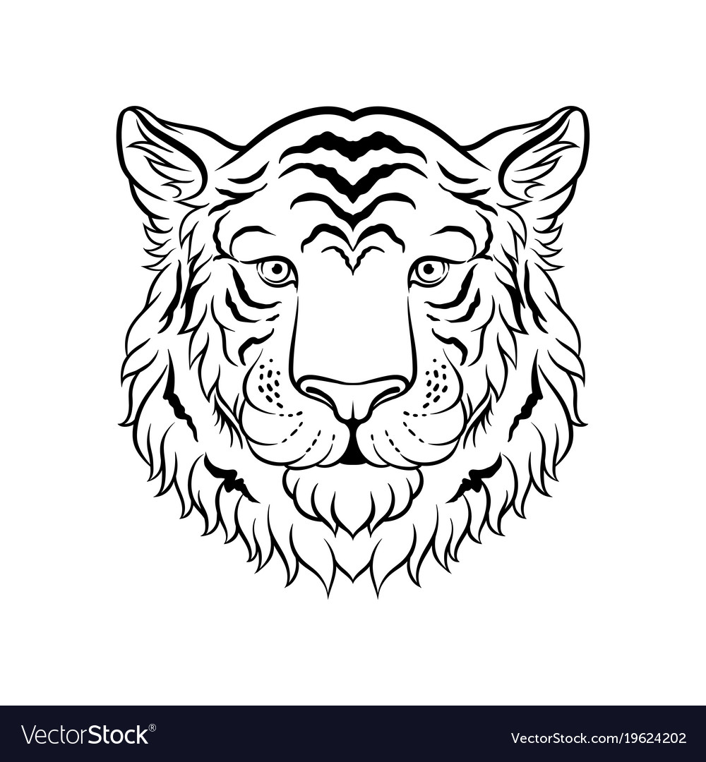 Black and white sketch of tigers head face of