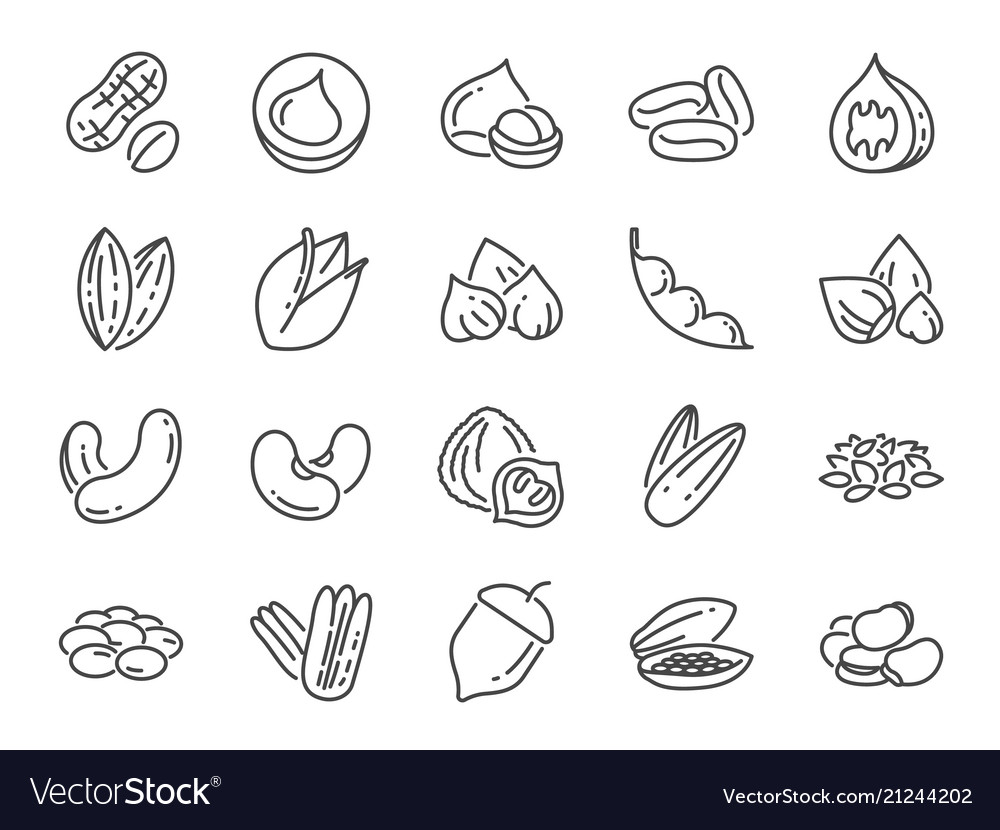 Nuts seeds and beans icon set