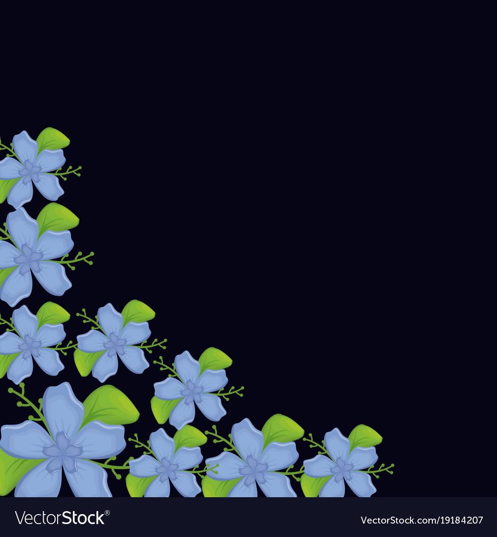 Beautiful flowers design royalty free vector image beautiful flowers design vector image izmirmasajfo