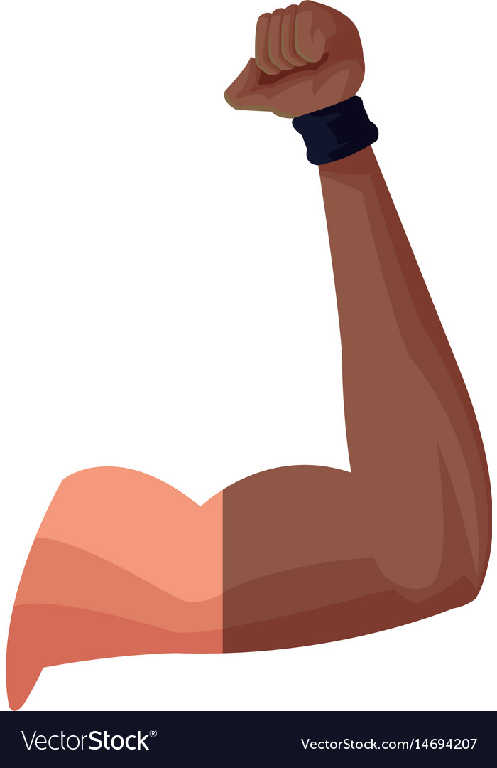 Strong arm biceps muscle fitness vector image