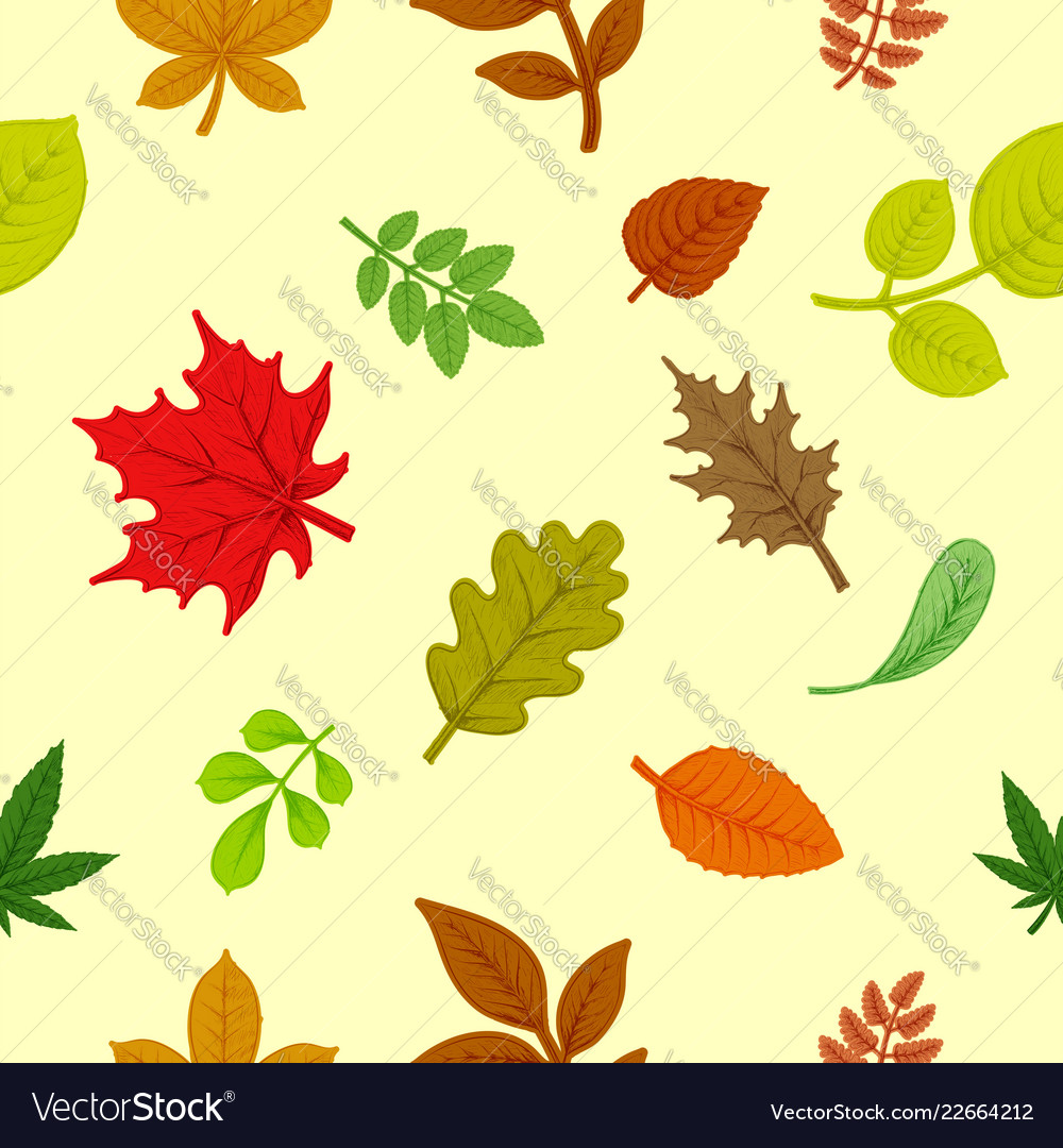 Background colorful autumn leaves