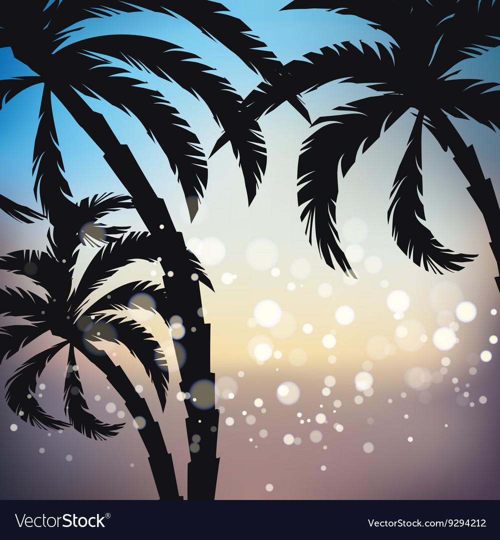 Palms sunset background vector image