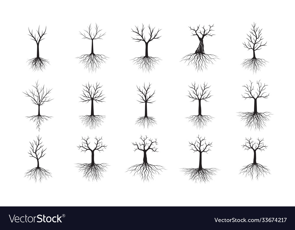 Set black trees with roots outline