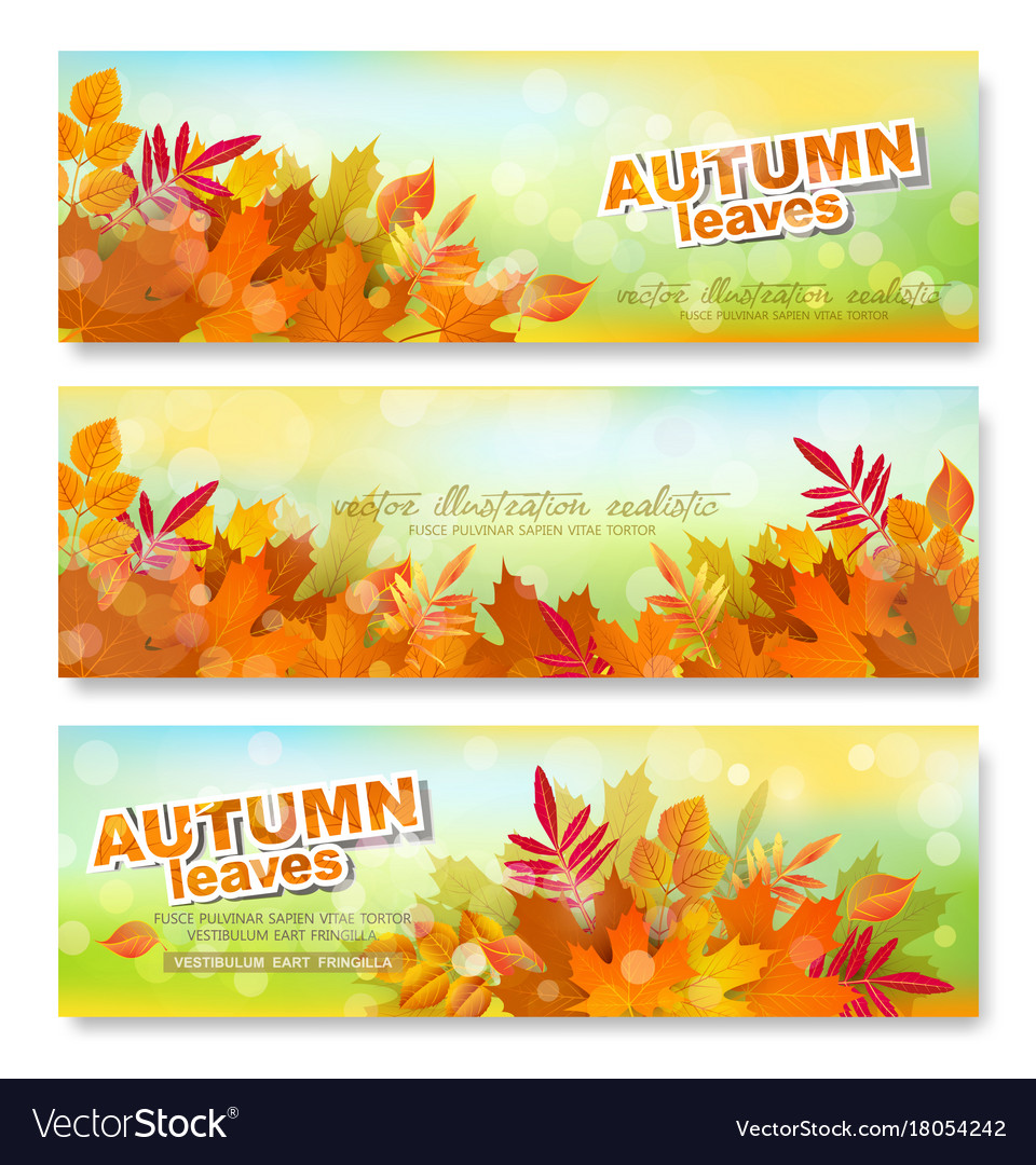 Set banner template with autumn colorful