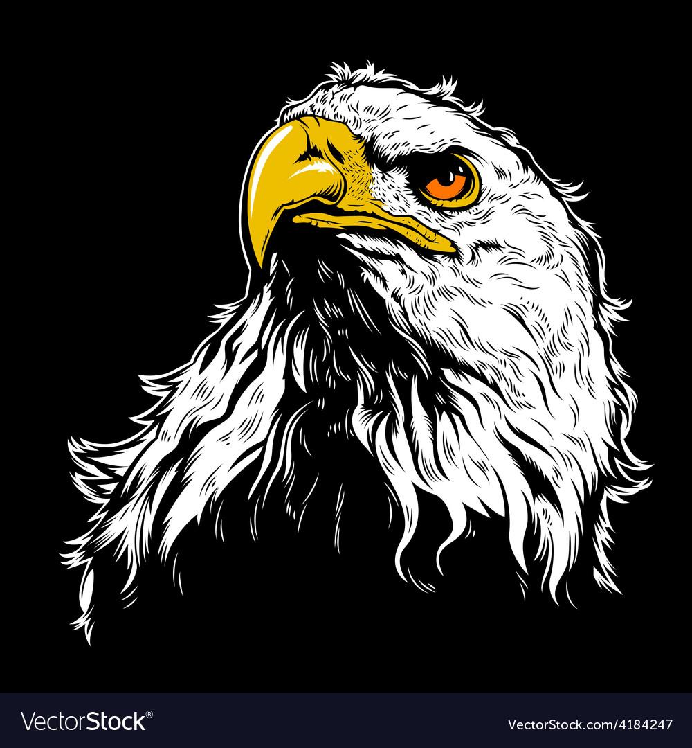 White Eagle Head vector image