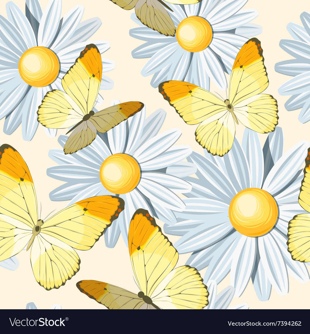 Camomile and butterfly seamless