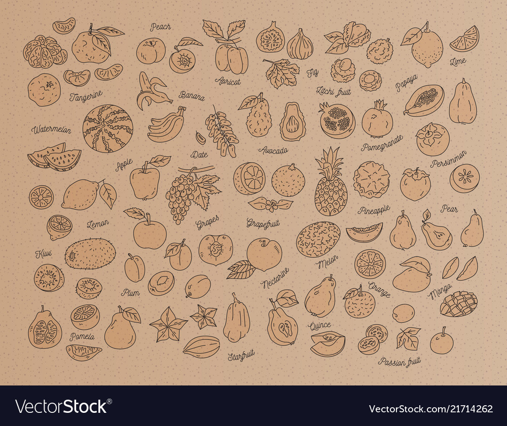 Fruit icon hand-drawn set fruits on kraft
