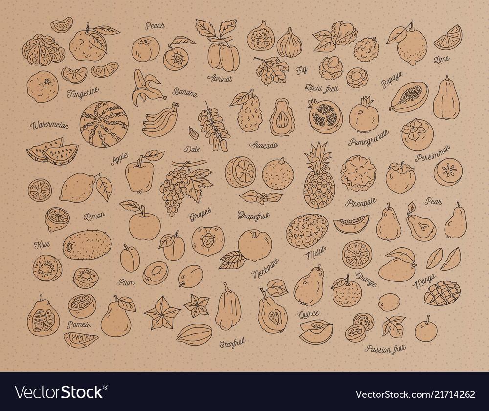 Fruit icon hand-drawn set of fruits on kraft