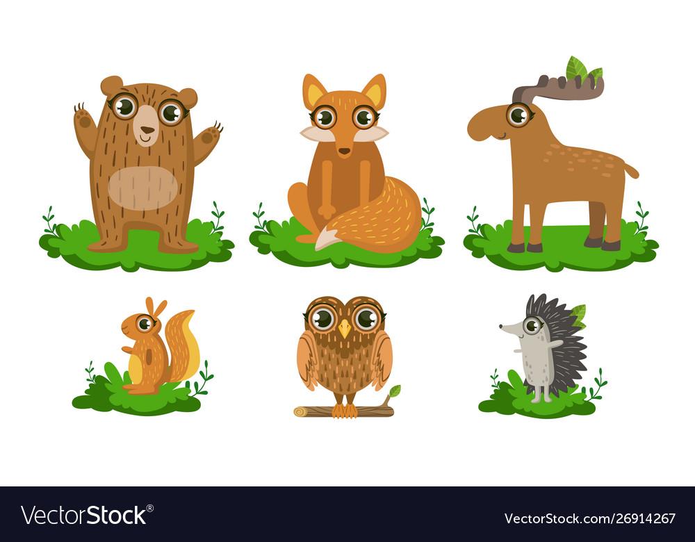 Cute woodland animals set owl hedgehog bear