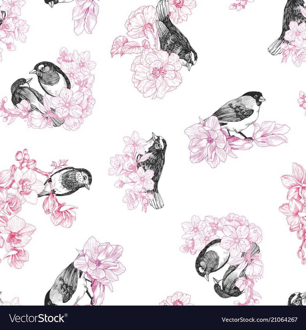 Seamless pattern birds hand drawn in vintage