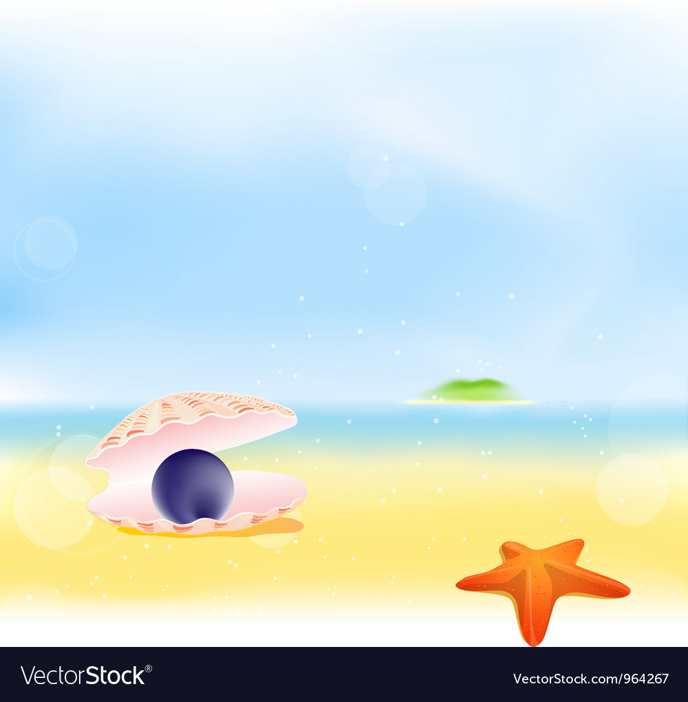 Summer Pearls Beach Background vector image