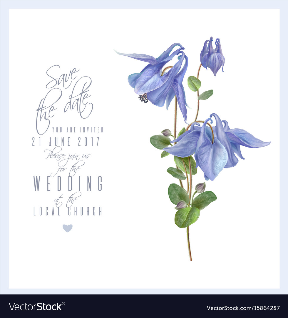 Blue flower card vector image