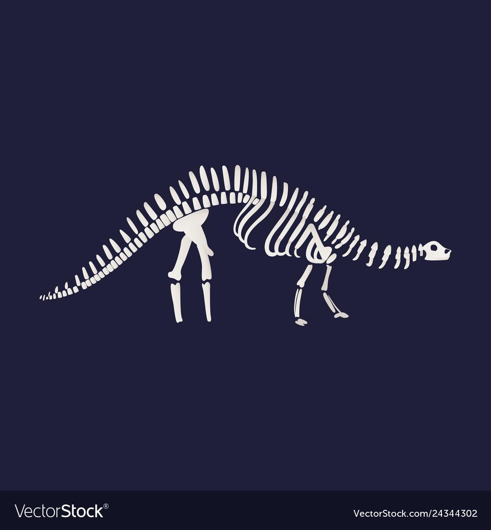 Diplodocus dinosaur fossil skeleton icon on