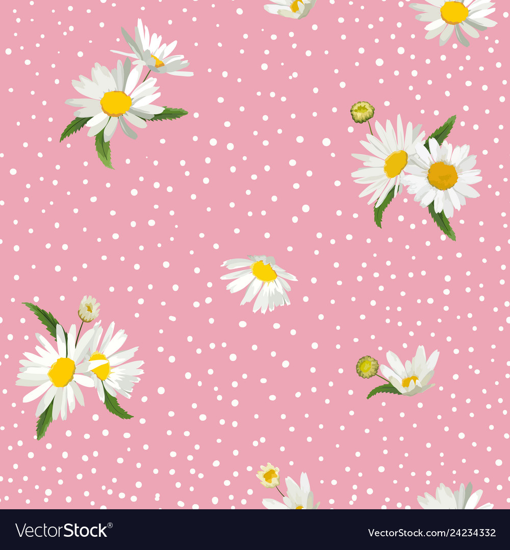Floral seamless pattern with blossom daisy flowers