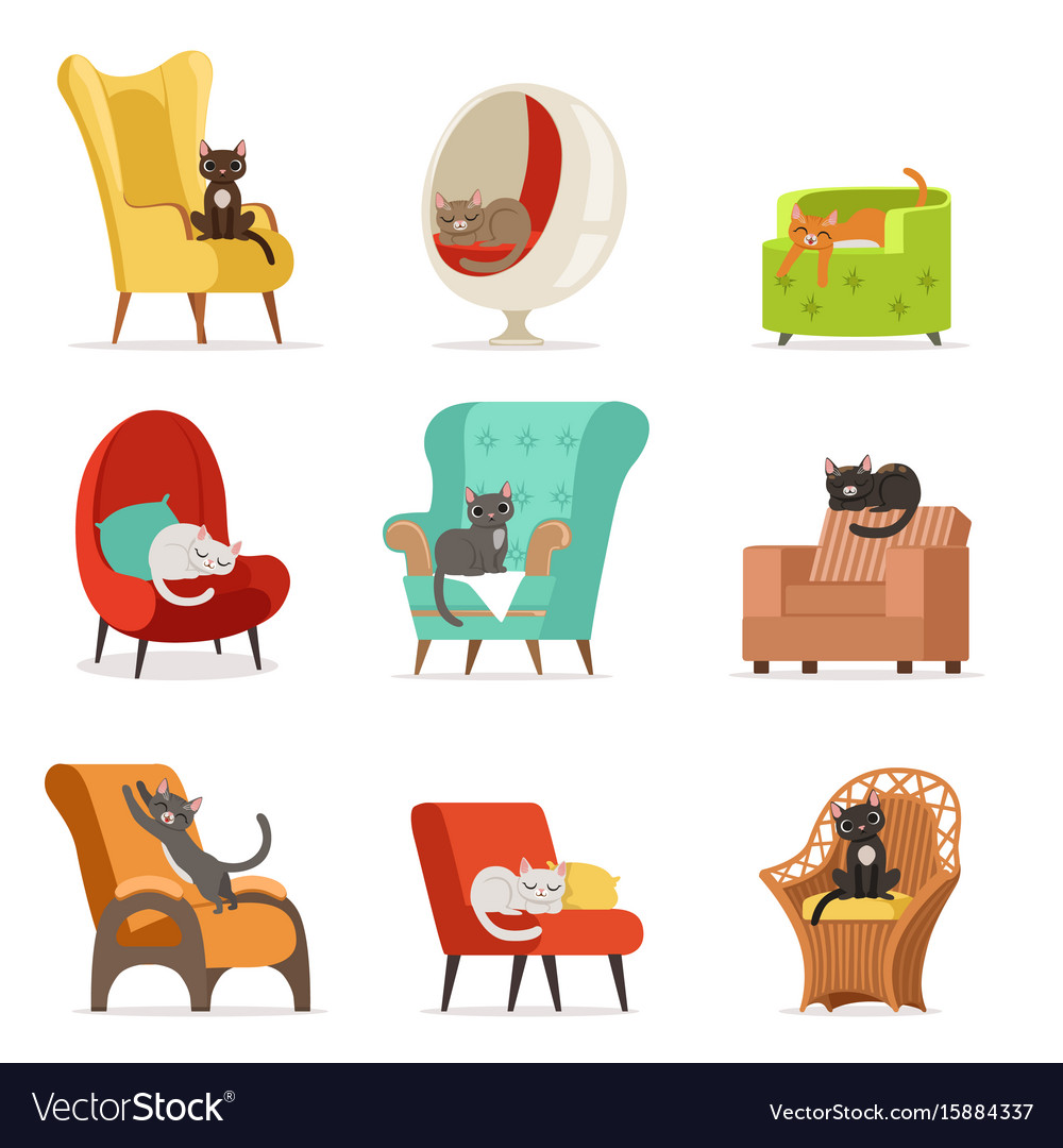 Cute different cats characters lying and resting
