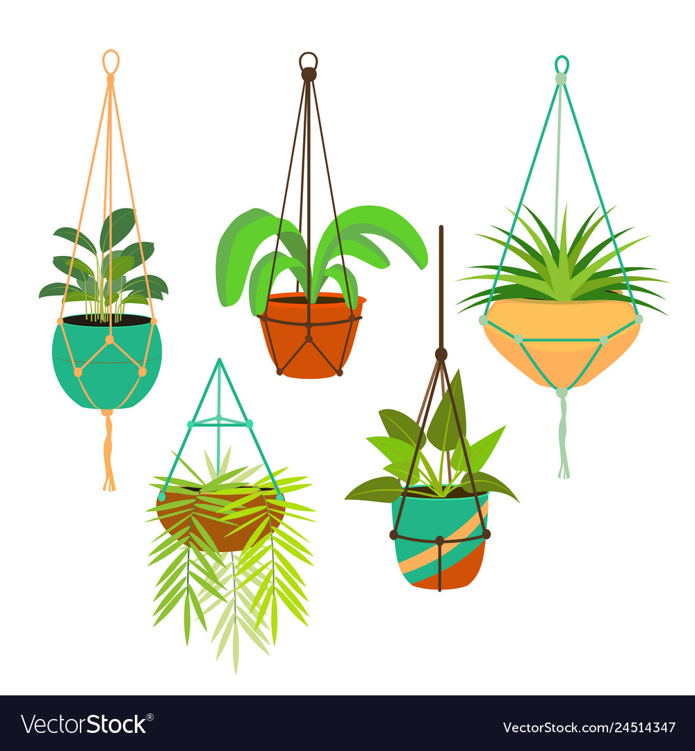 Cartoon color macrame hangers for home plants set