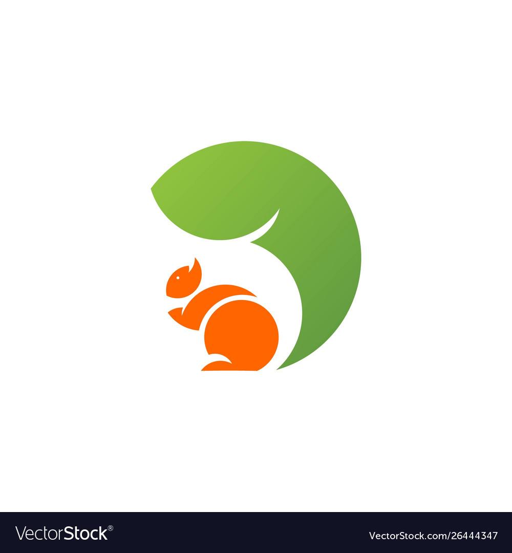 Squirrel logo template