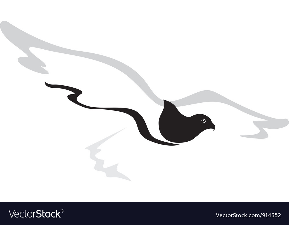 Hawk vector image