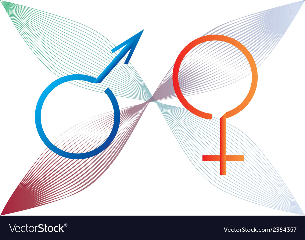 Two gender signs created from ribbon vector image