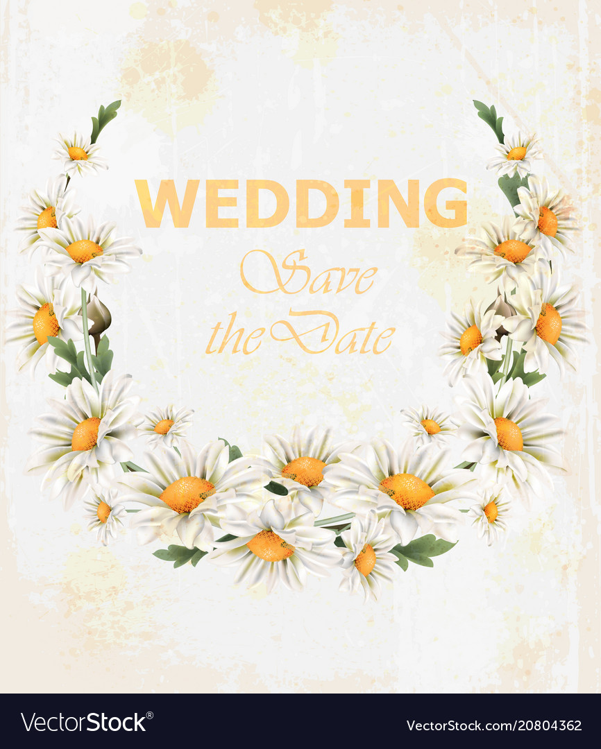 Chamomile flowers wedding wreath card vector image