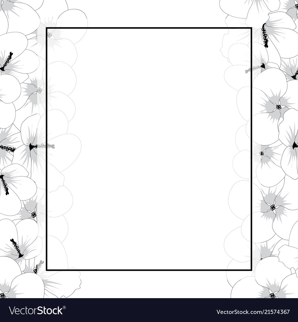 Hibiscus Syriacus Flower Outline Rose Of Sharon Vector Image