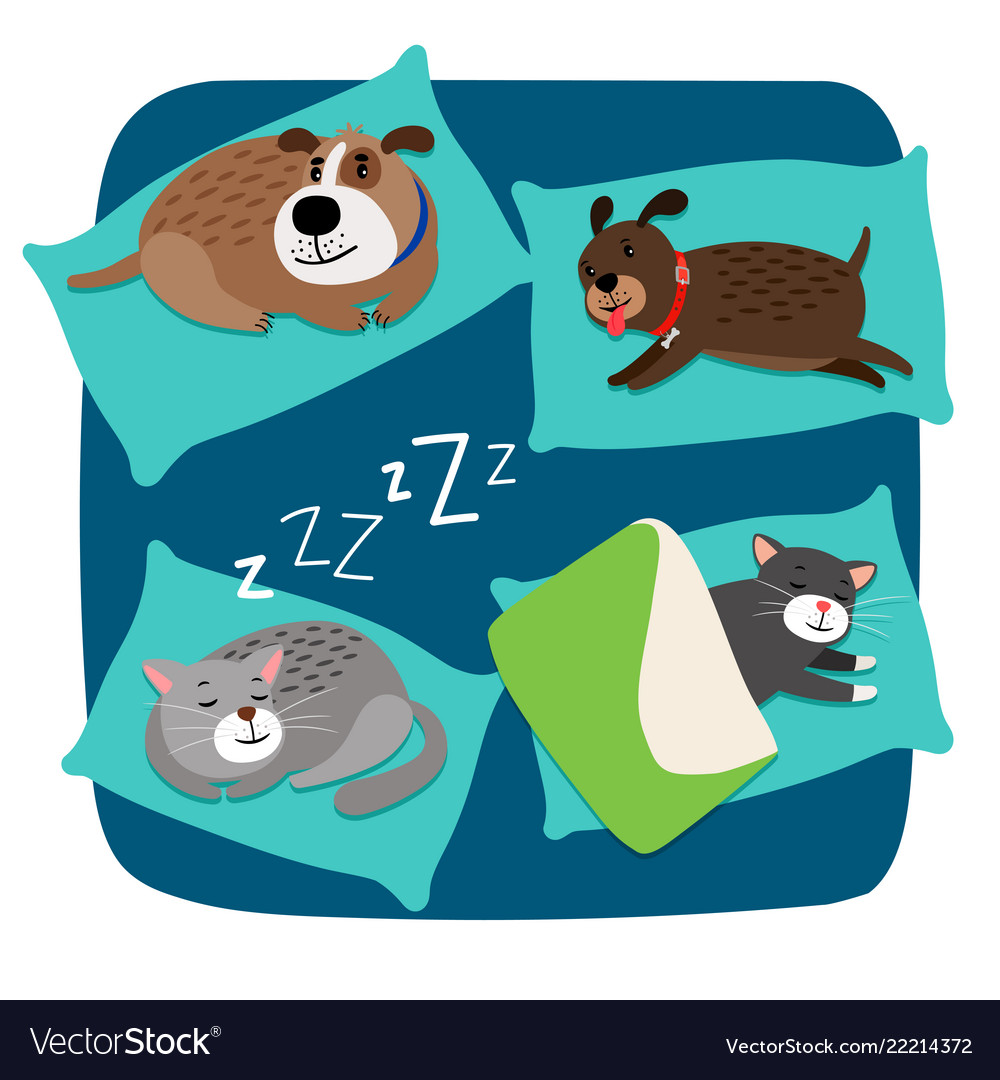 Sleeping dogs and cats