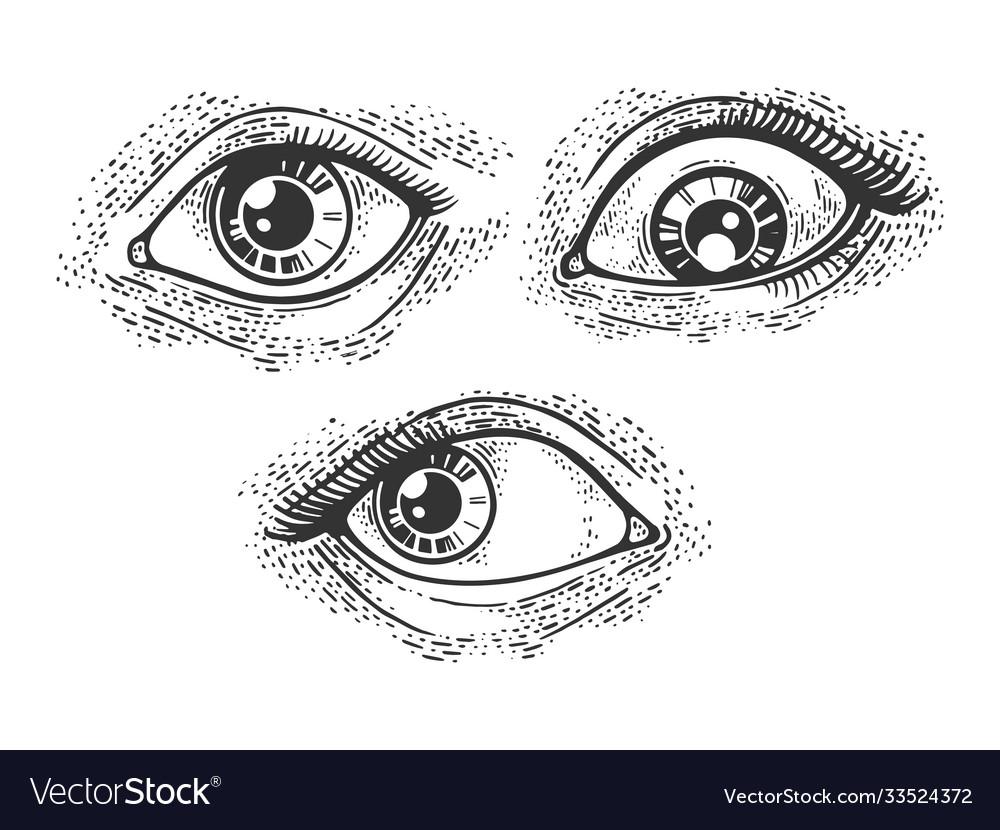 Woman eyes set sketch