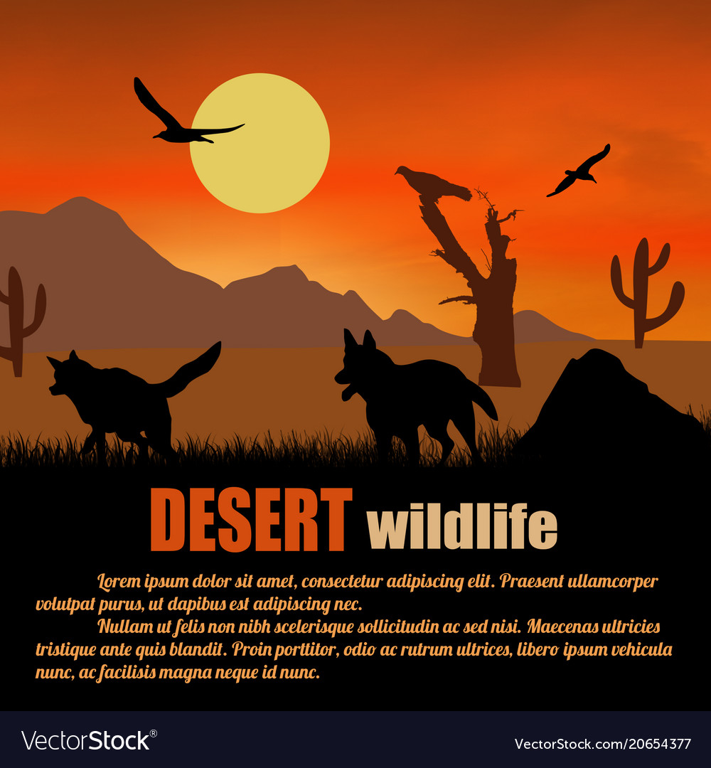 Desert wildlife poster wolves silhouettes on