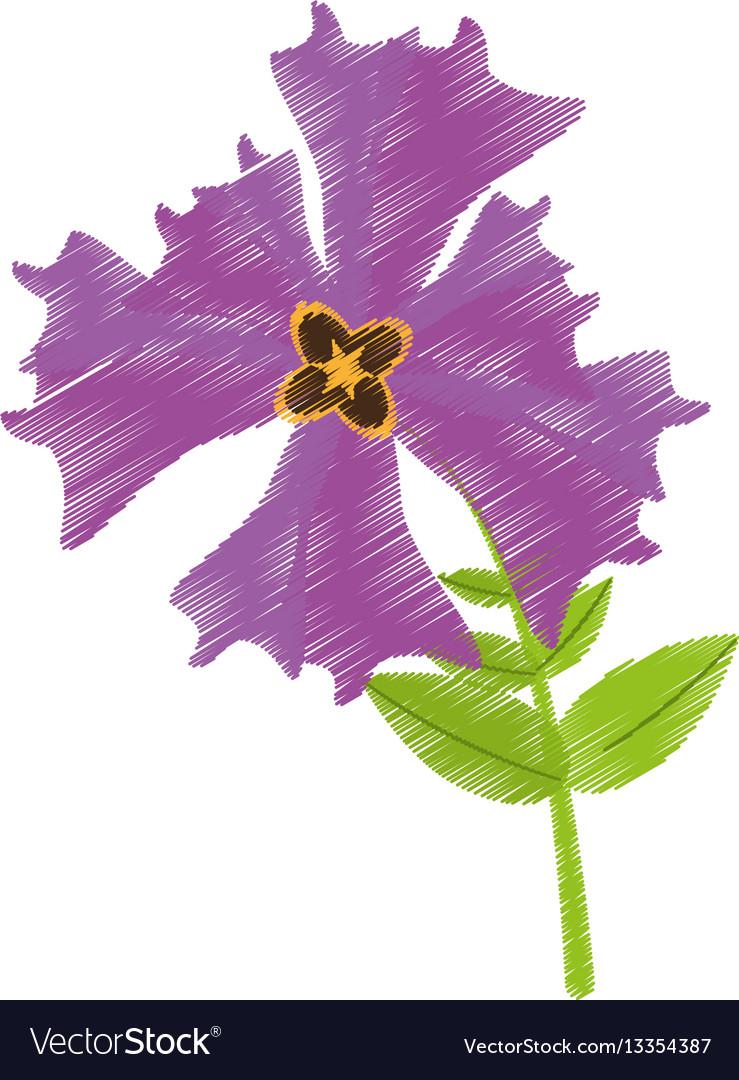 Drawing iris flower garden botanical royalty free vector drawing iris flower garden botanical vector image izmirmasajfo