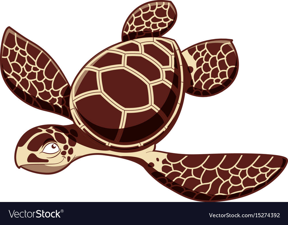 Catroos sea turtle