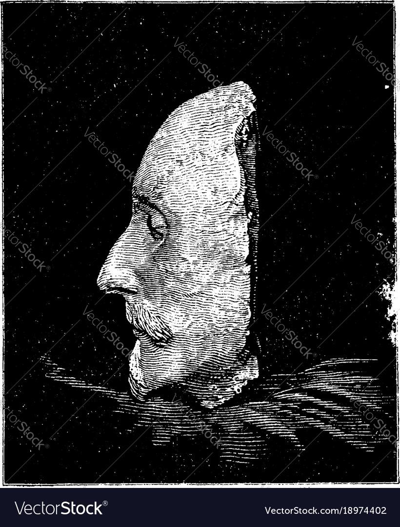 Shakespeare death mask left side vintage vector image