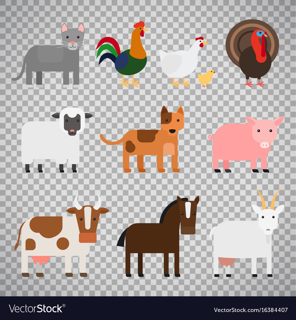 Farm animals on transparent background