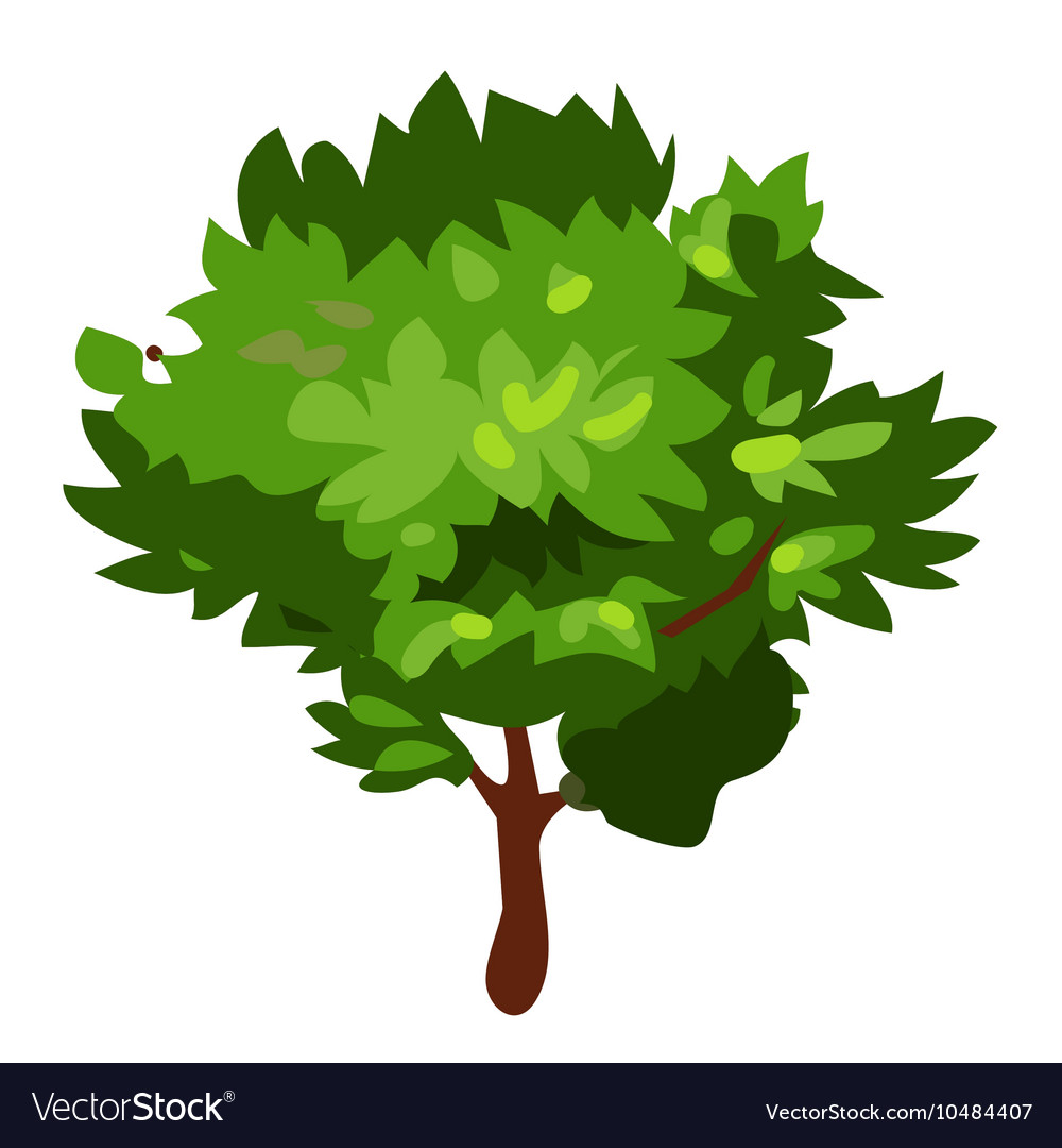 Green tree in cartoon style on white background