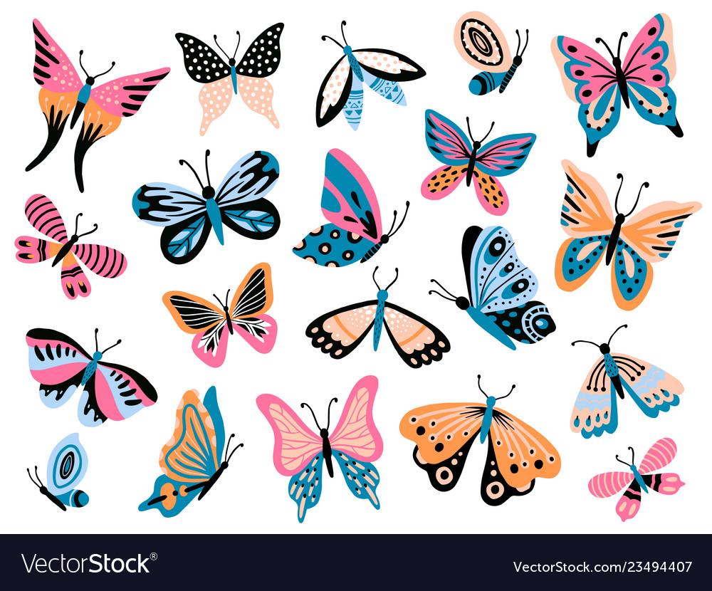 Hand drawn butterfly flower butterflies moth